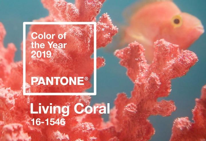 Living Coral: Encontrando elequilibrio.