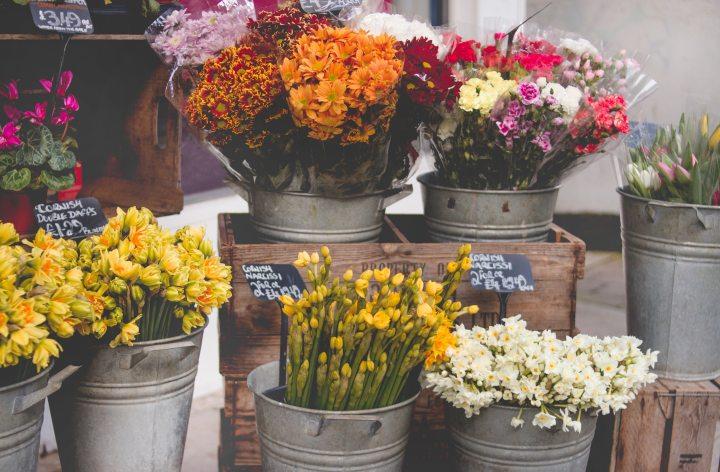Verano y flores: Los consejos de Picaflor para ponerle aroma y color a nuestrohogar.